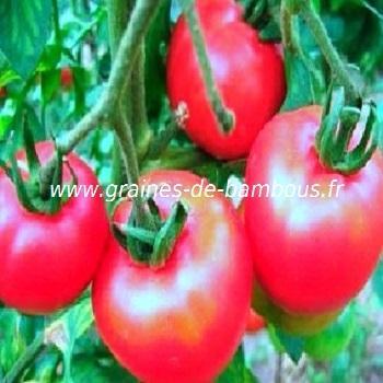 graines de tomate omar 39 s lebanese. Black Bedroom Furniture Sets. Home Design Ideas