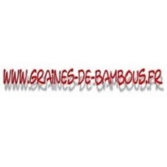 50 bamboo seeds dendrocalamus hamiltonii www graines de bambous fr