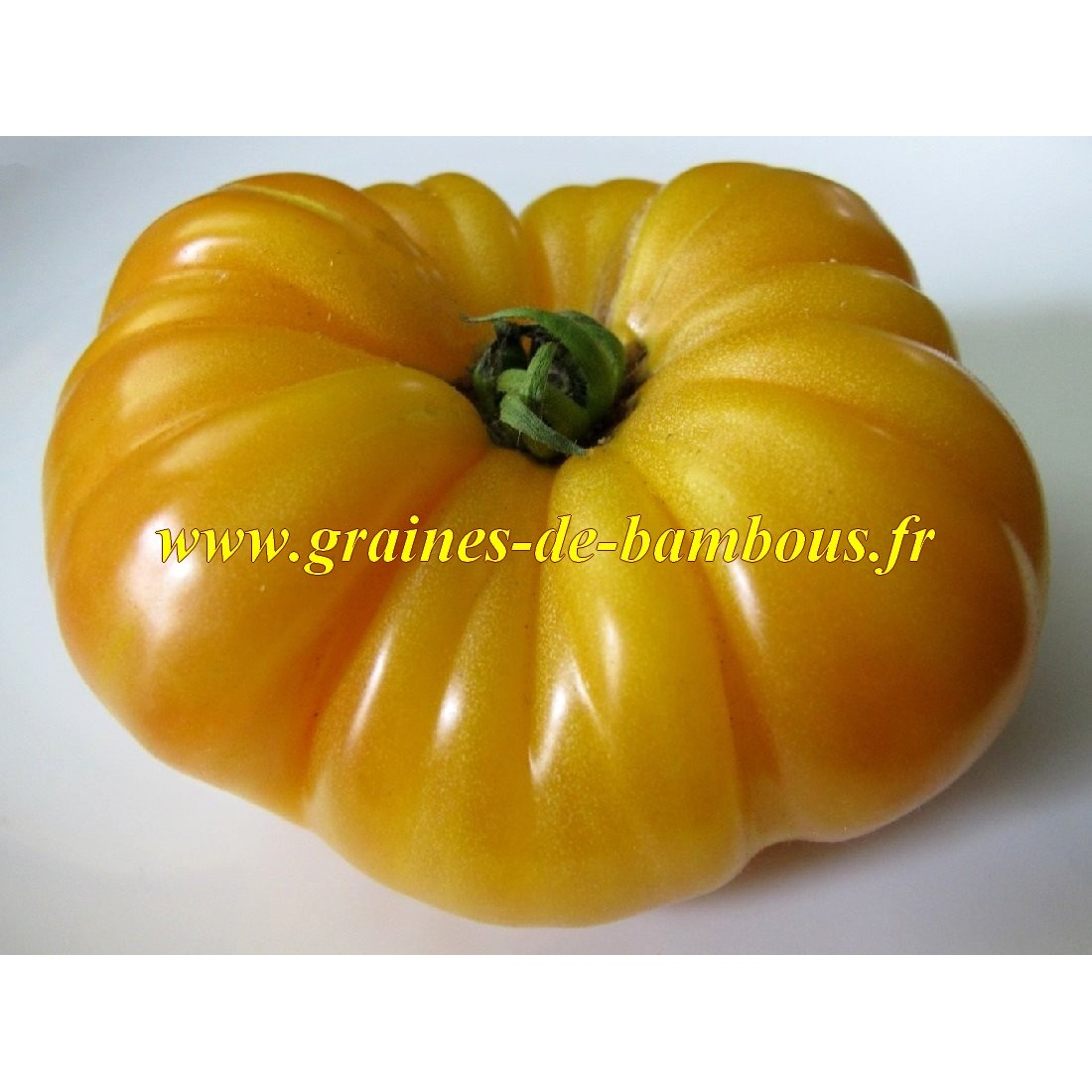 Ananas tomate graines