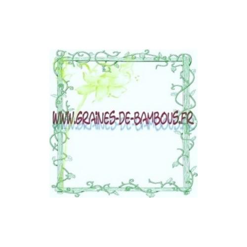 Artichaut vert cynera scolymus graines potagere legume