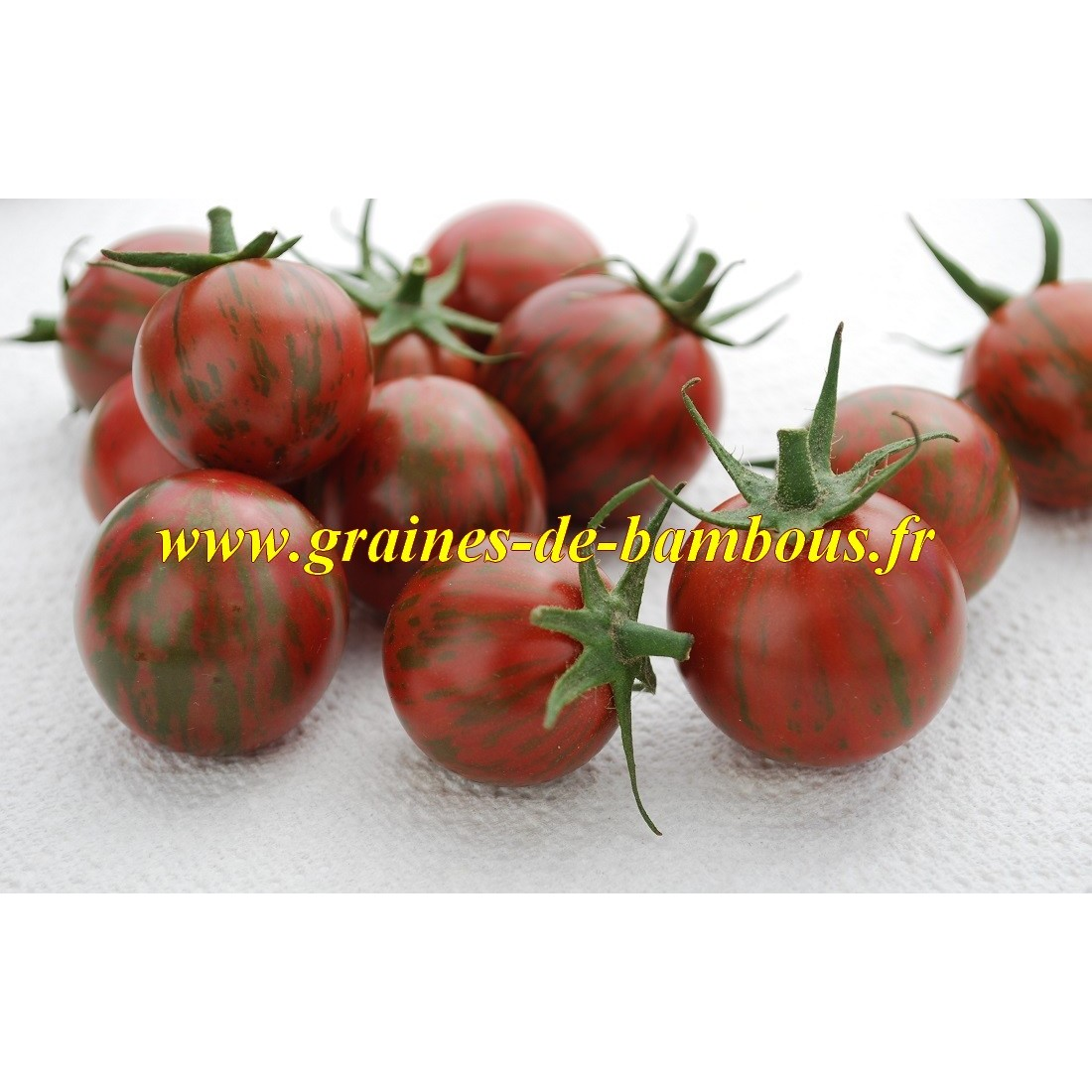 Artisan purple bumble bee graines de tomate