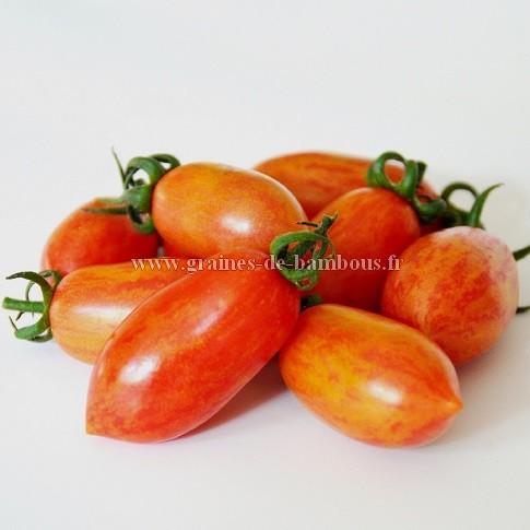 Artisan tomate pink tiger graines