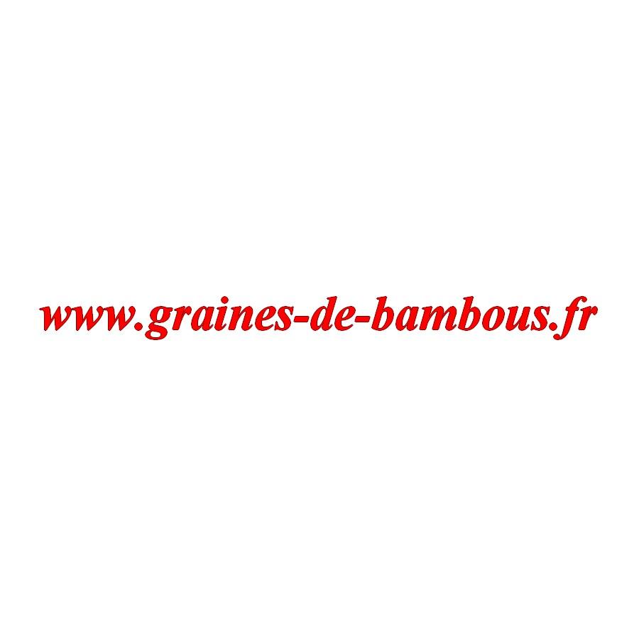 Brocoli graines de bambous fr