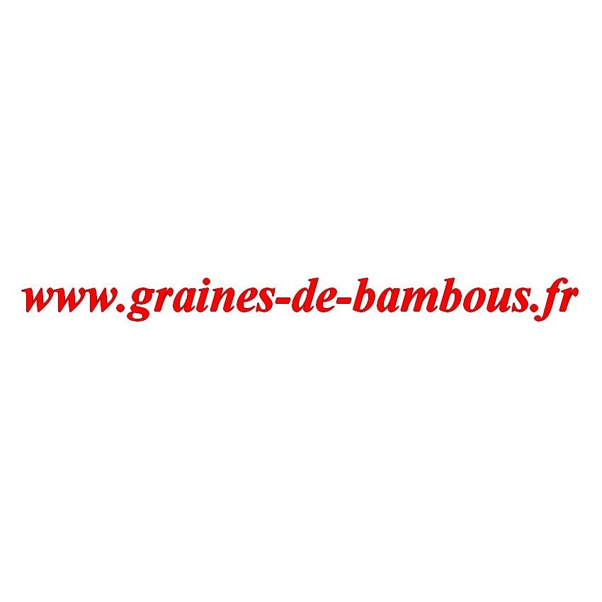 Carotte de colmar sur graines de bambous fr
