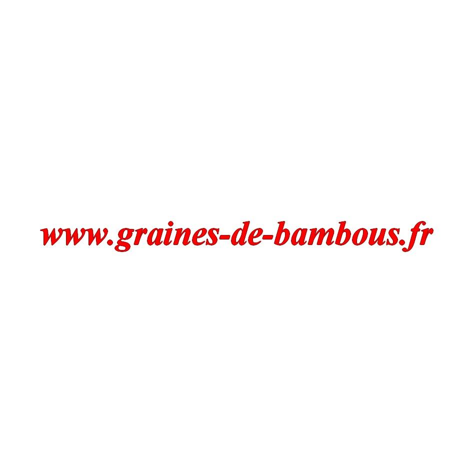 Carotte red atomic sur graines de bambous fr
