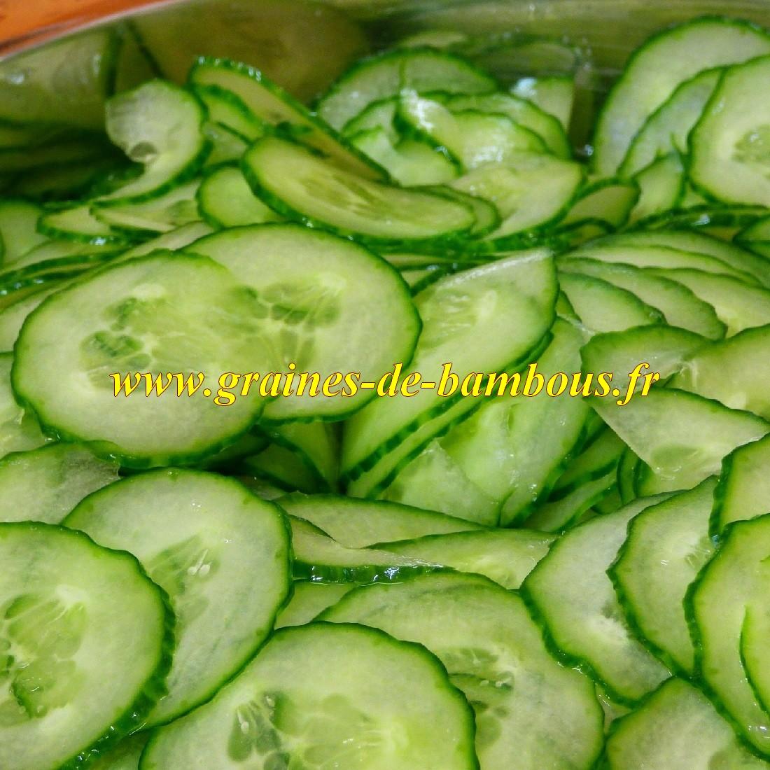 Concombre en salade