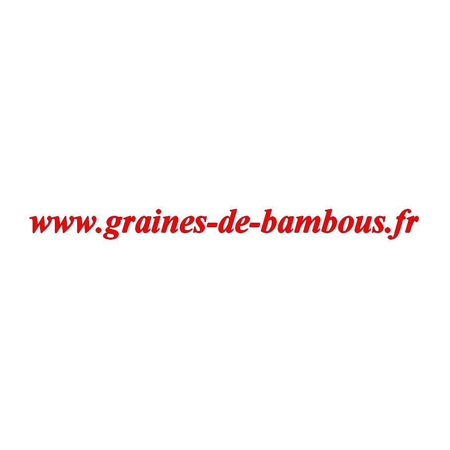 Concombre variete marketmore graines