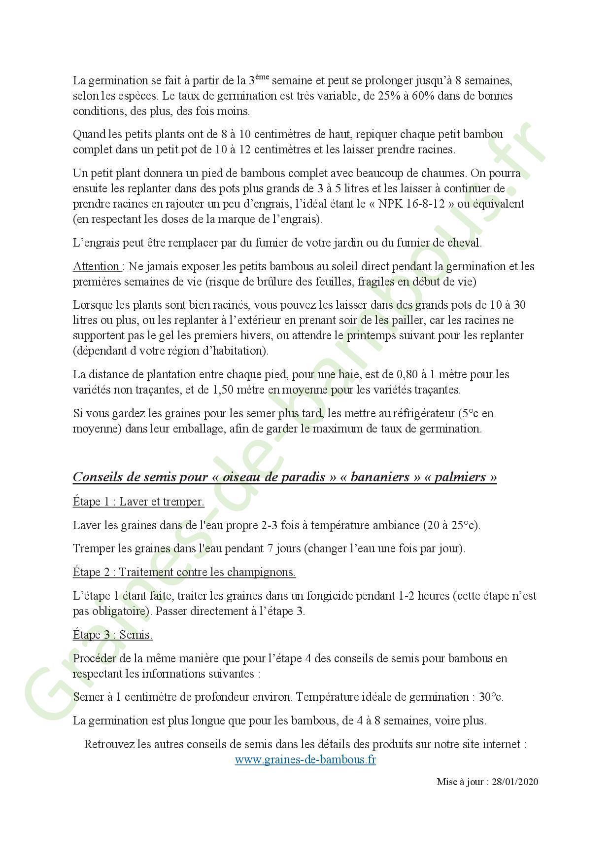 Conseils de semis pour bambous 20202