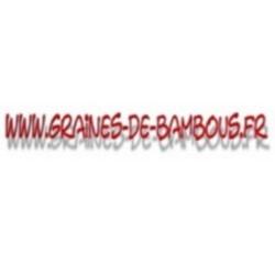 Cotonnier blanc ornemental gossypium herbaceum www graines de bambous fr