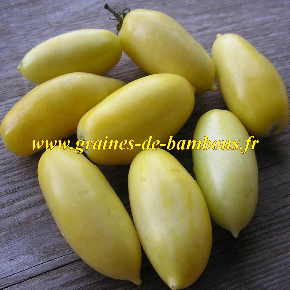 Cream sausage tomate graines de bambous eu