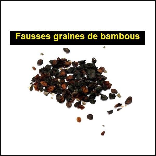 Fausses graines de bambous sur le net