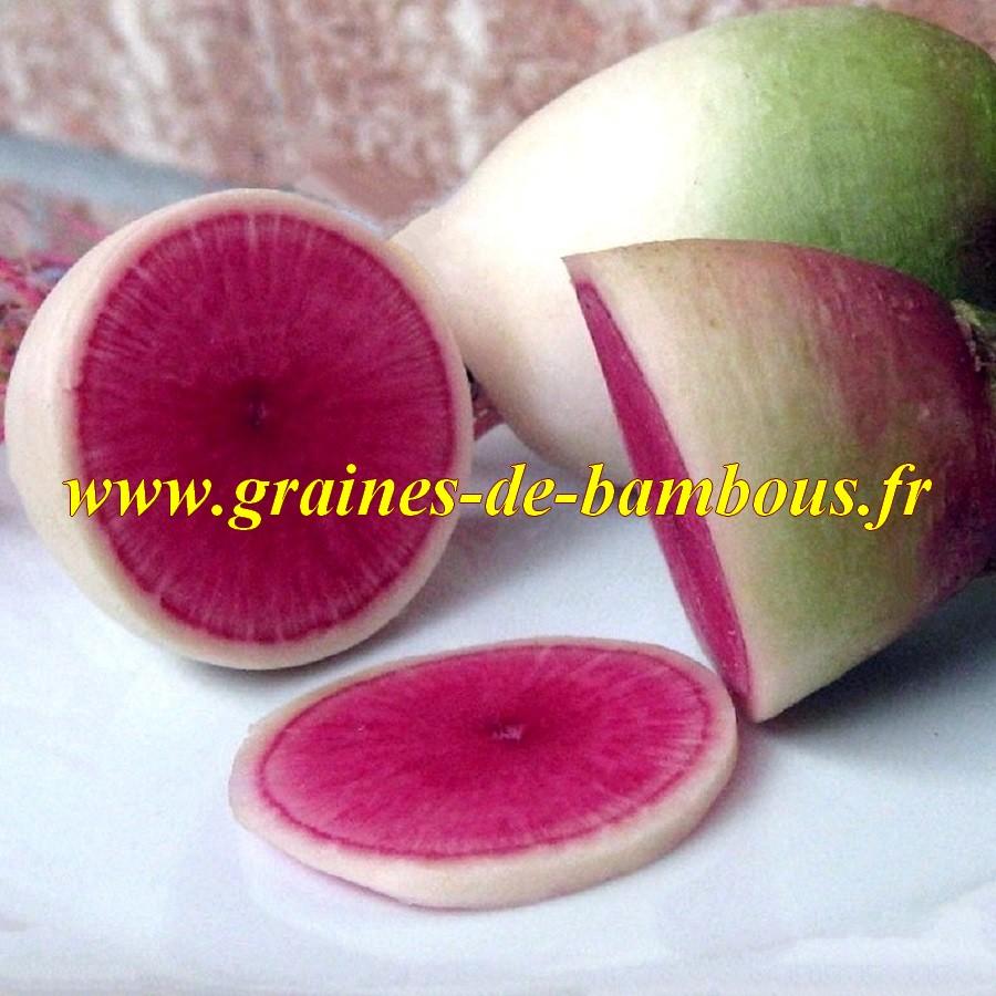 Graines de radis pasteque