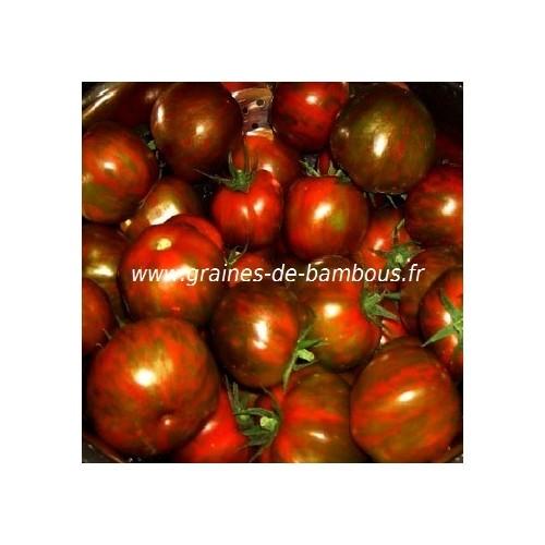 Graines de tomate black zebra