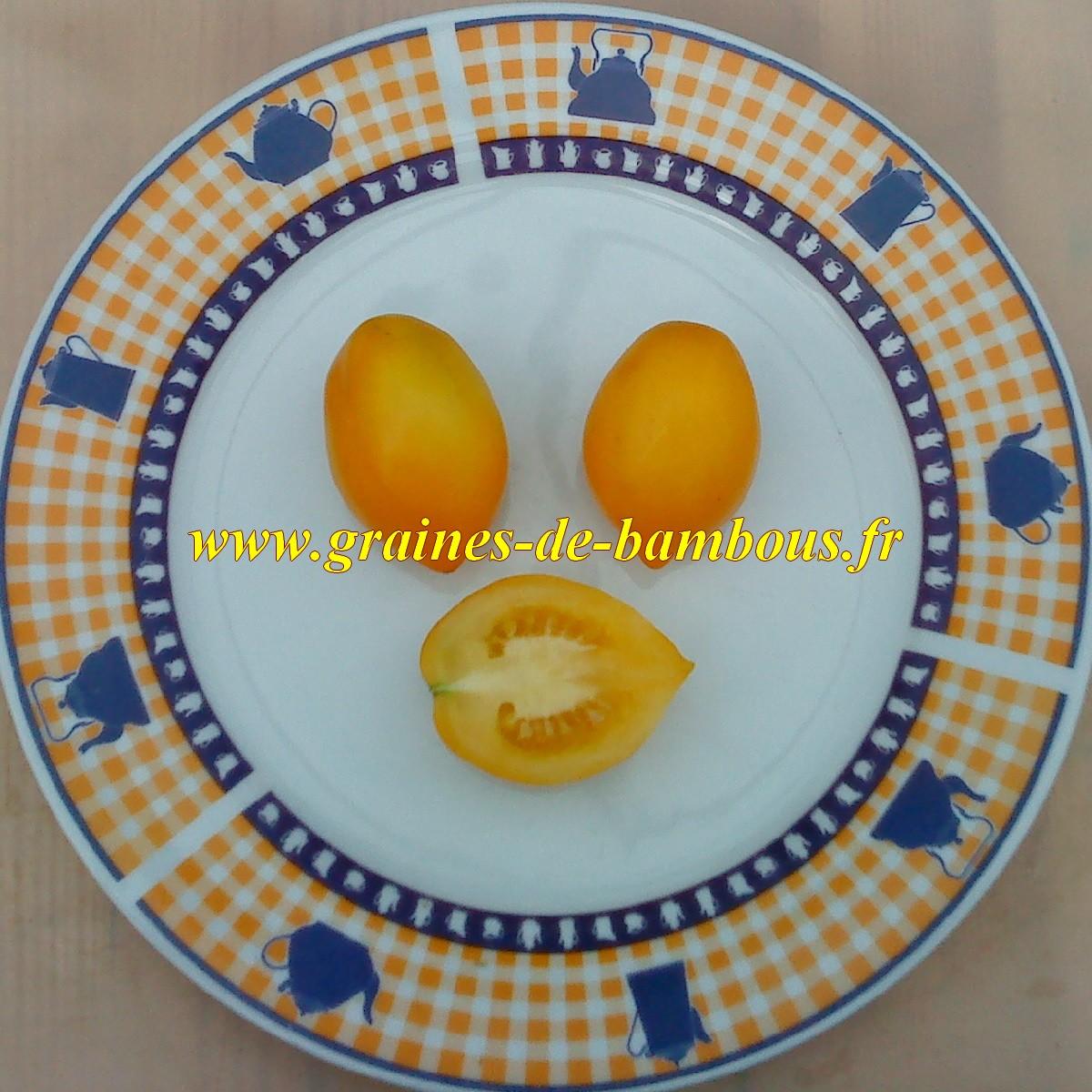 Graines de tomate citron