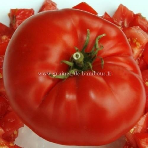Graines de tomate watermelon beefsteak