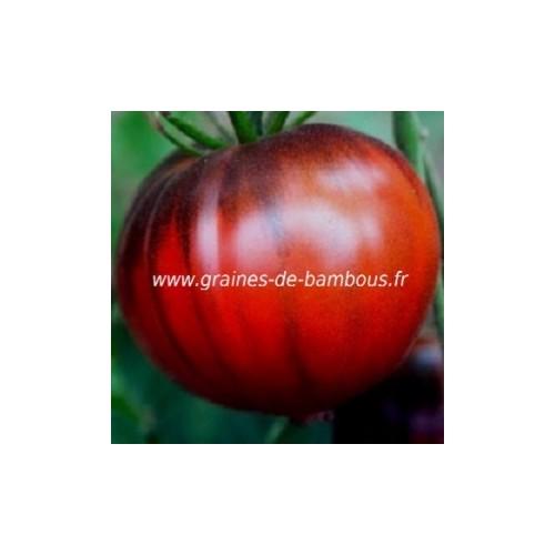 Graines tomate black seaman