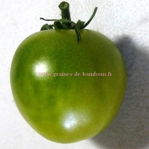Green grape tomate verte cerise