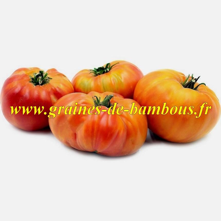 Hillbilly tomate graines de bambous fr