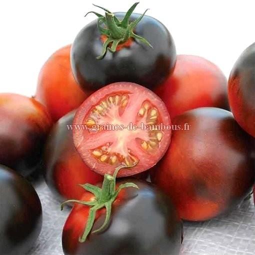 Tomate Indigo Apple réf.357