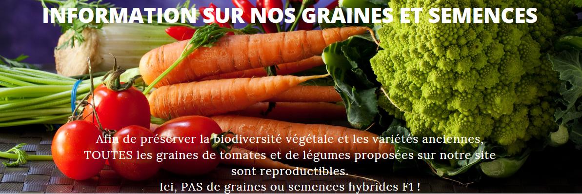 Information sur nos graines et semences 2
