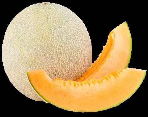 Melon icone gdb