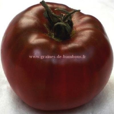 Tomate noire de Crimée réf.254