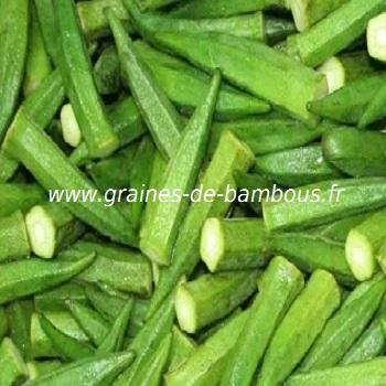 Gombo ou Okra vert réf.371