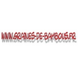 Pitaya graines de bambous fr