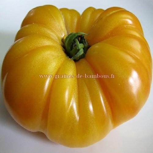 Semences graines tomate ananas