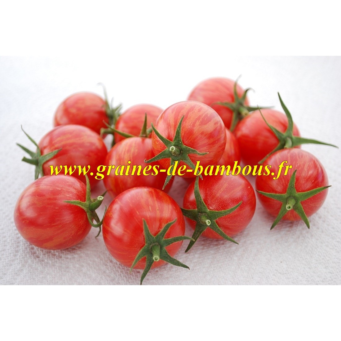 Semences tomate pink bumble bee sur graines de bambous fr