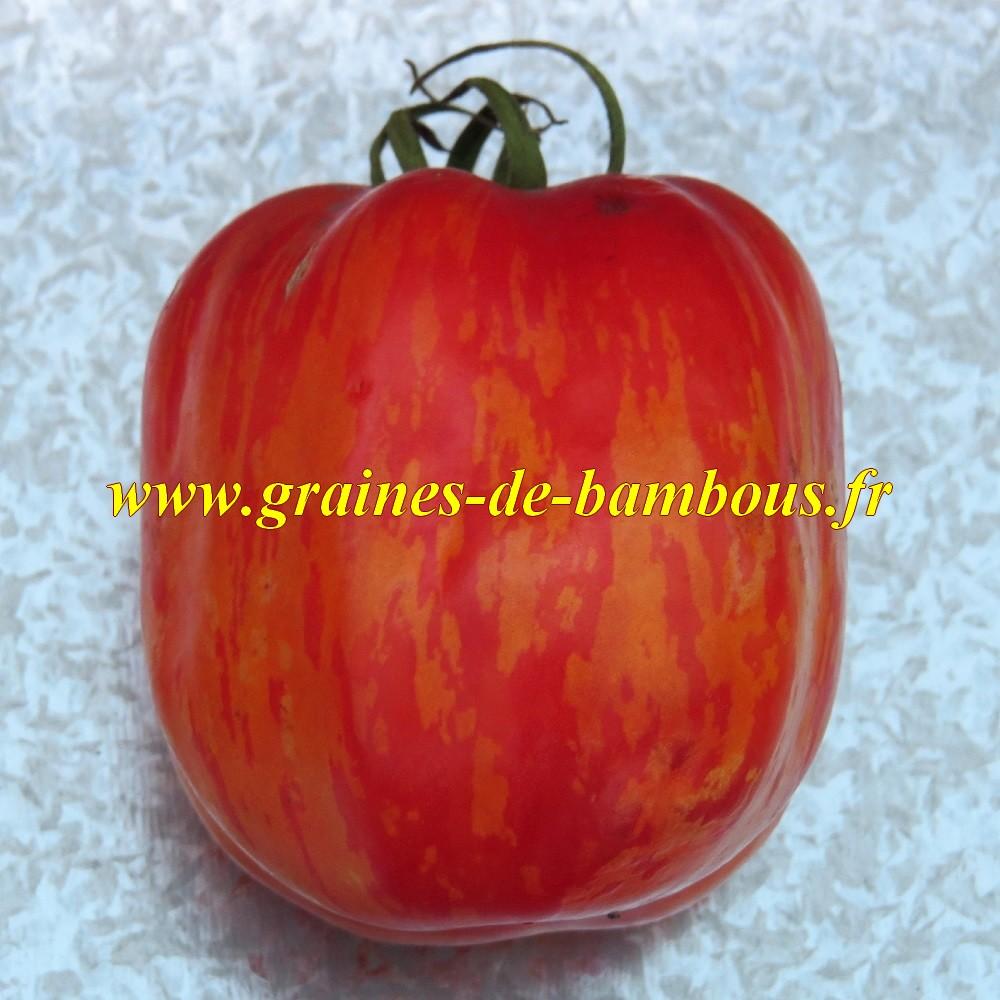 Striped stuffer graines de tomate non traitee