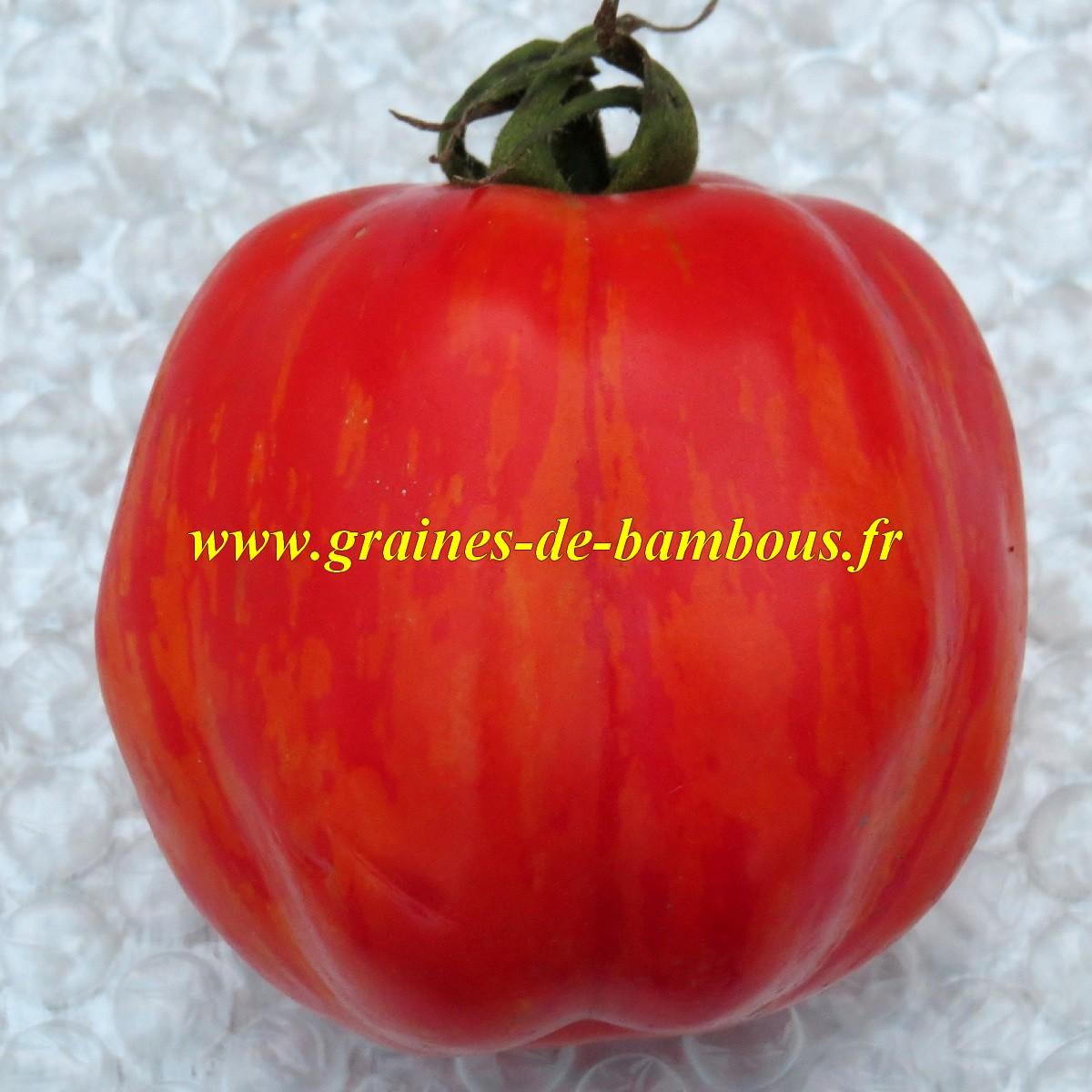Striped stuffer graines de tomate