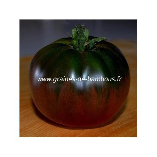 Tomate black russian ou noire russe graines