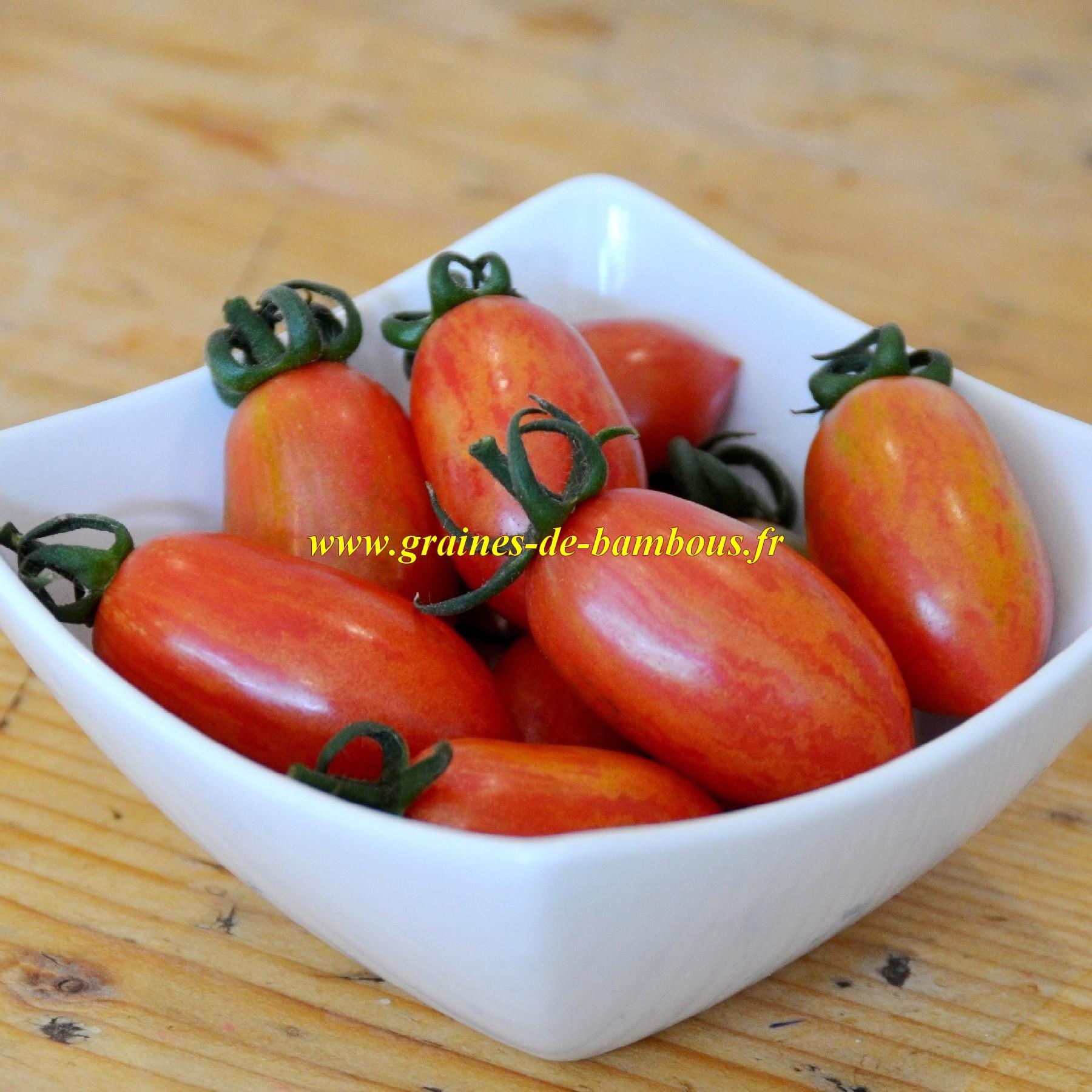 Tomate cerise artisan allongee