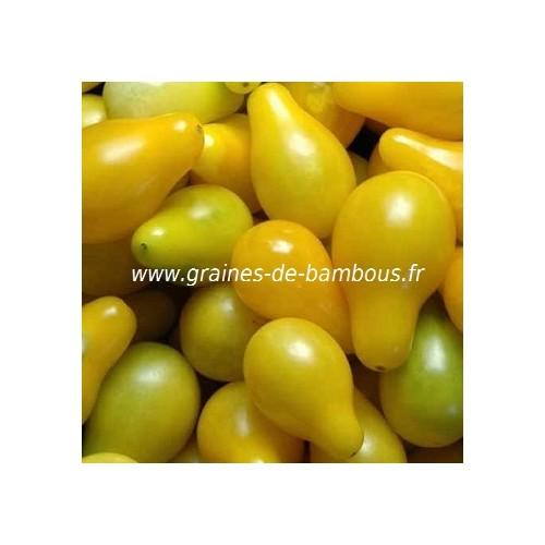 Tomate cerise poire jaune semences