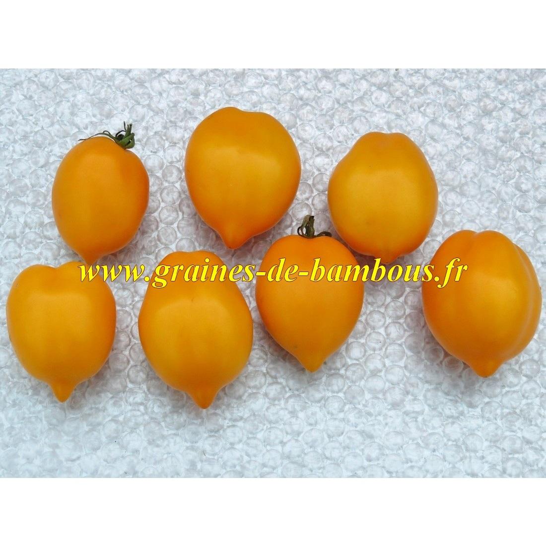 Tomate citron graines de bambous eu