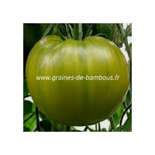Tomate evergreen lycopersicum esculentum tomato seeds