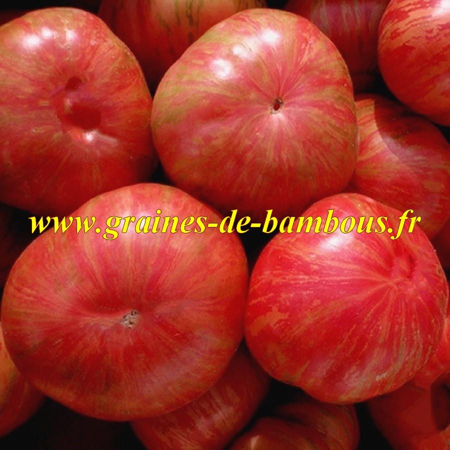 Tomate graines de vintage wine