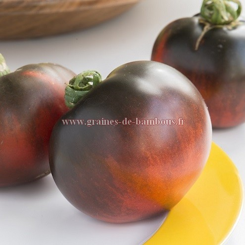 Tomate indigo apple semences