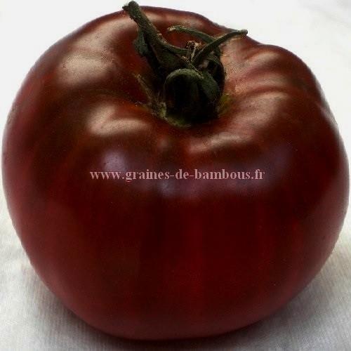 Tomate noire de crimee graines