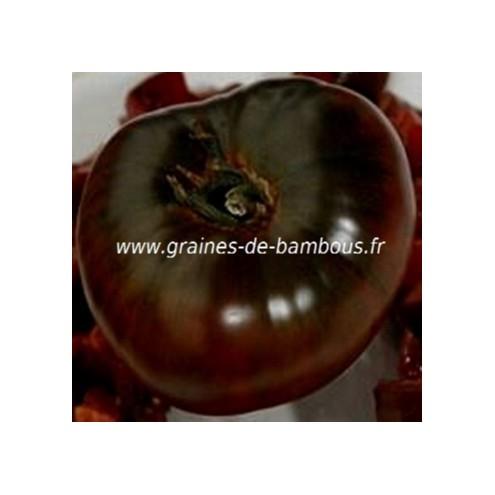 Tomate noire de tula graines de bambous fr