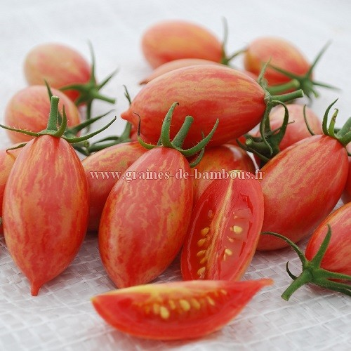 Tomate allong e pink tiger en sachet de 10 ou 50 graines - Tiger boutique en ligne ...