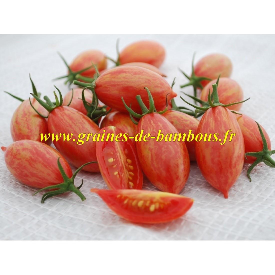 Tomate pink tiger graines de bambous fr