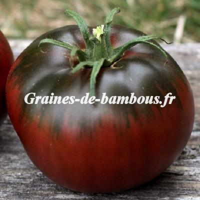 Tomate noire Black From Tula 500 graines