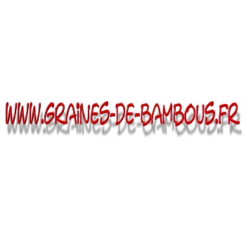 www-graines-de-bambous-fr-l.jpg