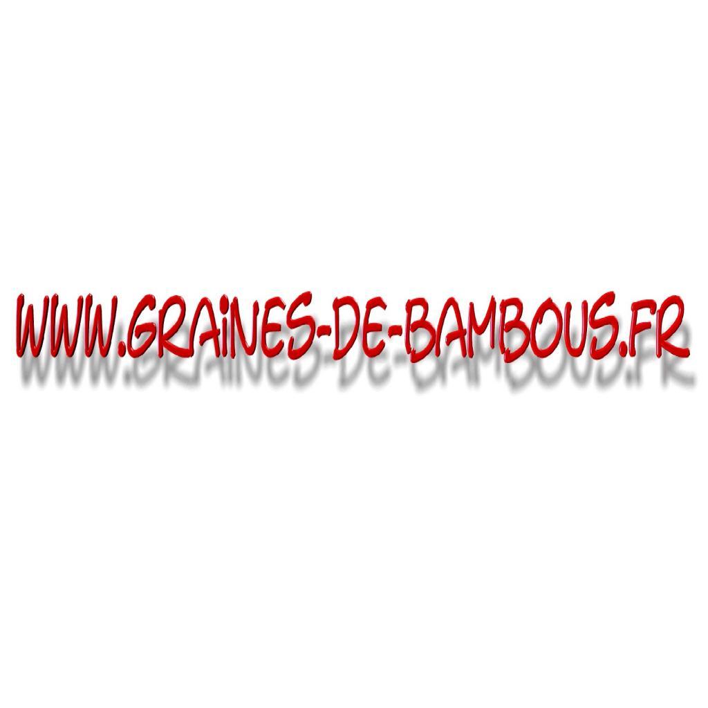 www-graines-de-bambous-fr.jpg